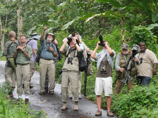 Trinidad, Trinidad and Tobago, Asa Wright Nature Centre, Caligo Ventures, Trinidad Birding Tour